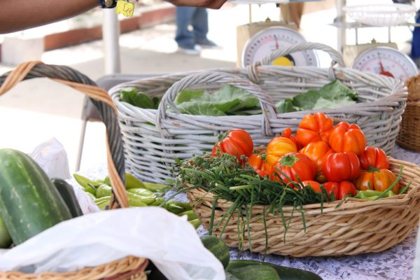 Urban Agriculture and Farmers Market