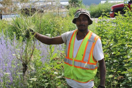Walnut Way Receives Funding to Improve Green Infrastructure